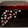 Bento-Box / Jubako Hanami 2