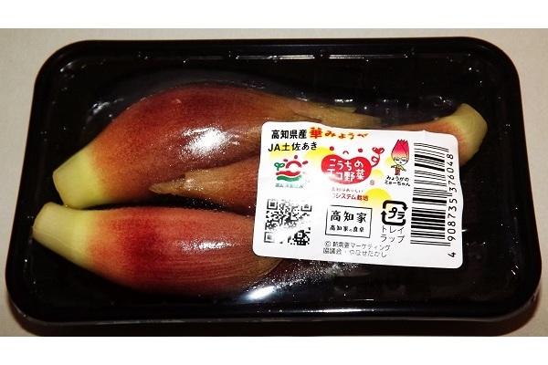 Myoga - Frischer japanischer Ingwer - 3 Pack x 3 Stück 2