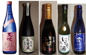 Sake-Start-Set gehobene Qualität 8 tlg. 12