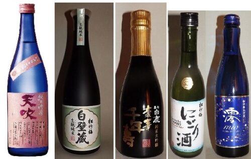 Sake-Start-Set gehobene Qualität 8 tlg. 5