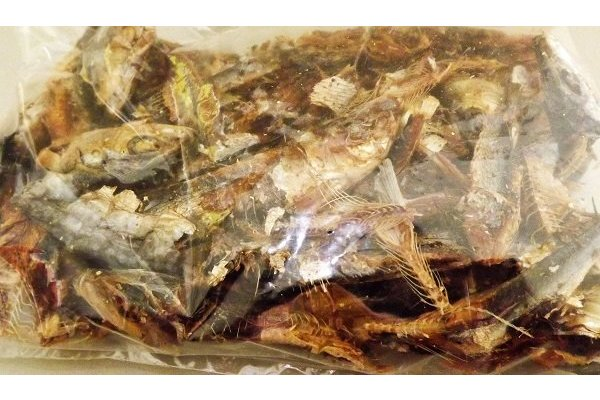 Niboshi / Iriko 100g Wadakyu / getrocknete + geräucherte kleine Sardinen (EU) 1