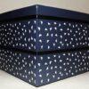 Bento-Box / Jubako Yuki Indigo 2