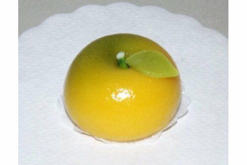 5 Stück Hanamochi Yuzu 5 x 20 g = 100 g GFC 5