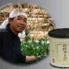 Dento Hon Gyokuro Prince of Kyushu 50 g 2