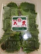 Frische japanische Shisoblätter 100 Stück 9