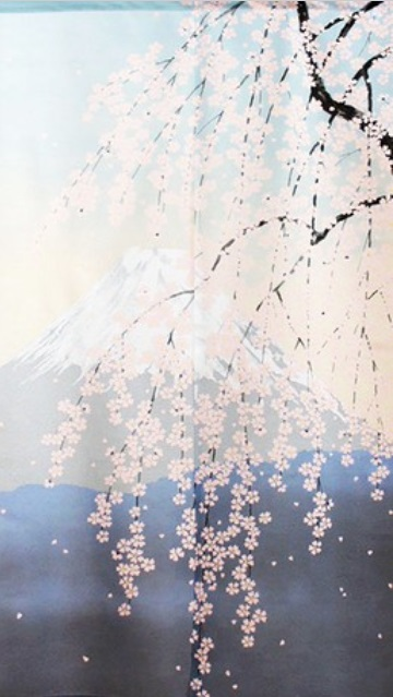 Noren Sakura aoi 9